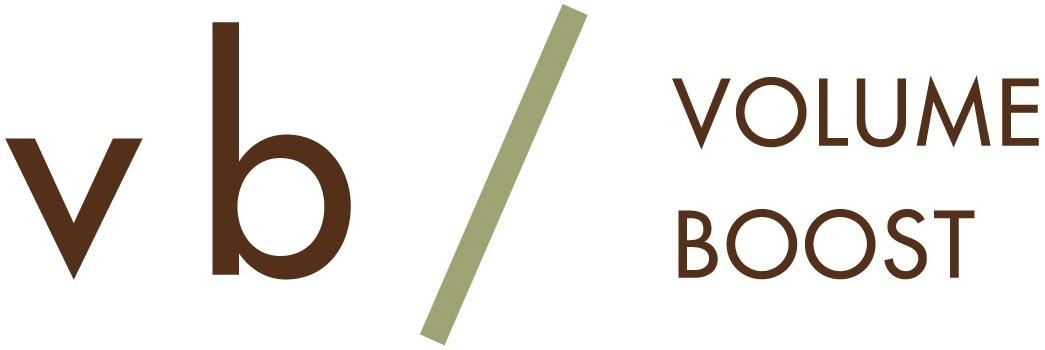 vb-logo-color2